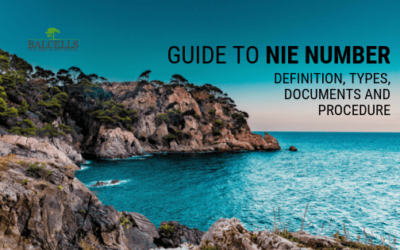 NIE NUMBER in Spain: Definition, Types, Procedure and Documents