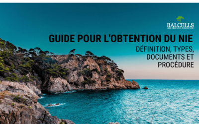 Obtenez le Numéro NIE en Espagne : Définition, Types, Documents et Procédure