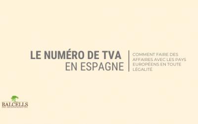 Numéro de TVA en Espagne : Procédure de Demande et Informations à Connaître