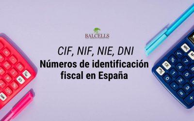 CIF y NIF: Números de Identificación Fiscal en España