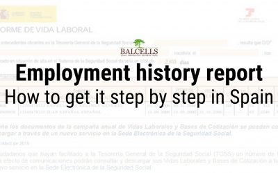 How to Get Your Employment History Report in Spain (Informe de Vida Laboral)