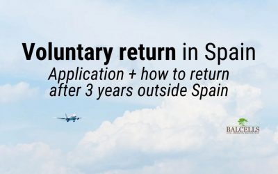 Voluntary Return: Application Procedure, Requirements & How to Return After 3 Years